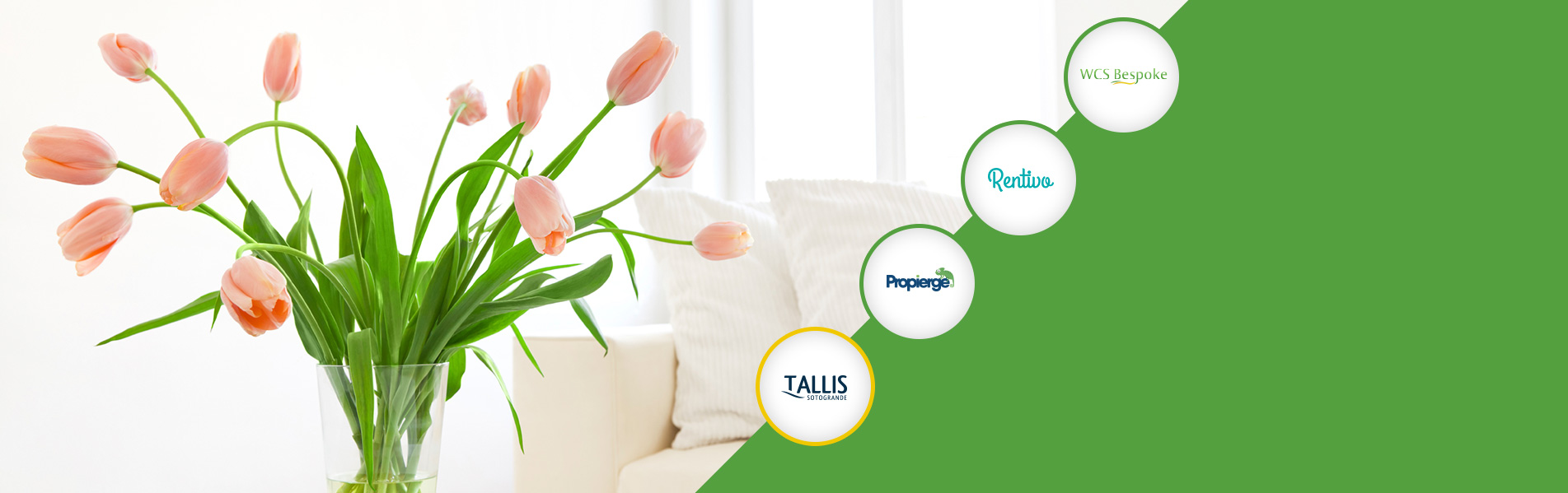 Tallis Travel